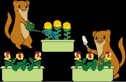 タッチー花壇